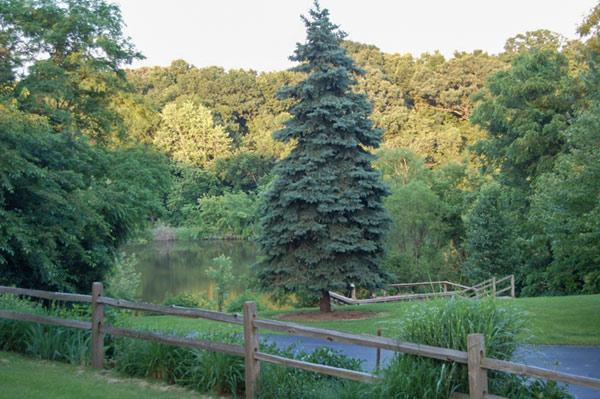 lasalle manor grounds